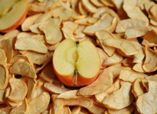 suszarnia przemysłowa do owoców